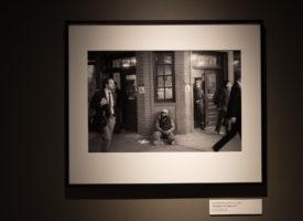 Exhibition_Pieces_12