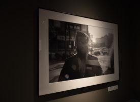 Exhibition_Pieces_13