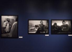 Exhibition_Pieces_75