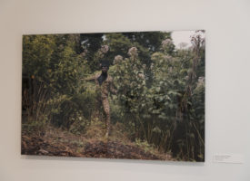 Exhibition_Pieces_80